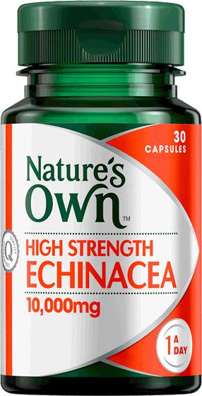 High Strength Echinacea